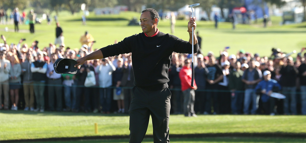 Fairways of Life:~Tiger Dominates Torrey Again