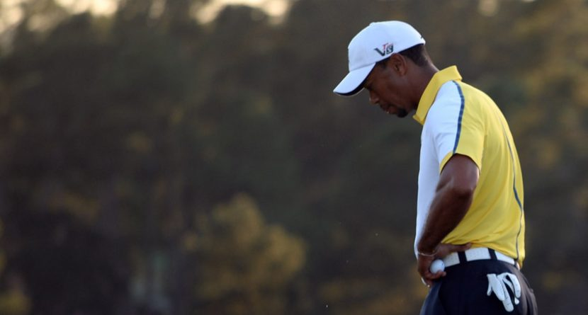 Column: You're Welcome For Tiger Not Being Disqualified