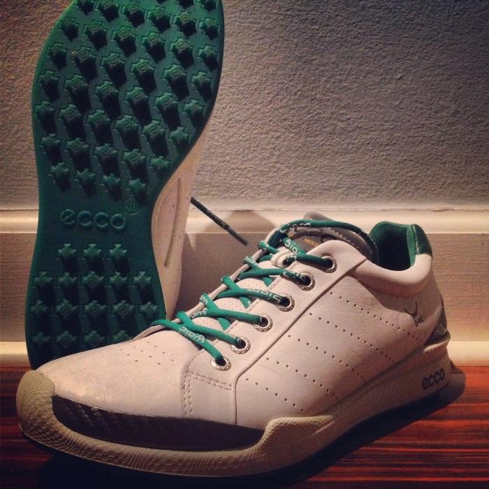 Ecco Men's BIOM Golf Hybrid Shoe
