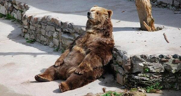 Bear_Keegan_Bradley_Dufnering_Article1
