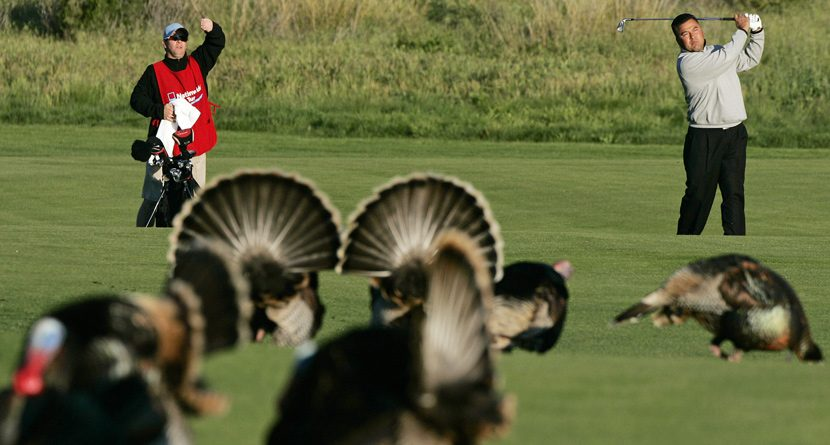 9 Things Every Golfer Should Be Thankful For