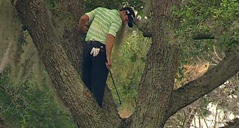 Golf's 13 Craziest Moments of 2013