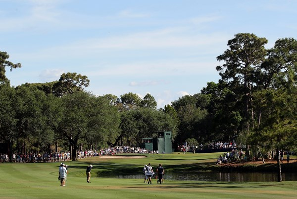 16th Innisbrook 600
