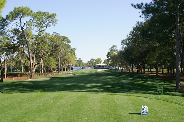 17th Innisbrook 600