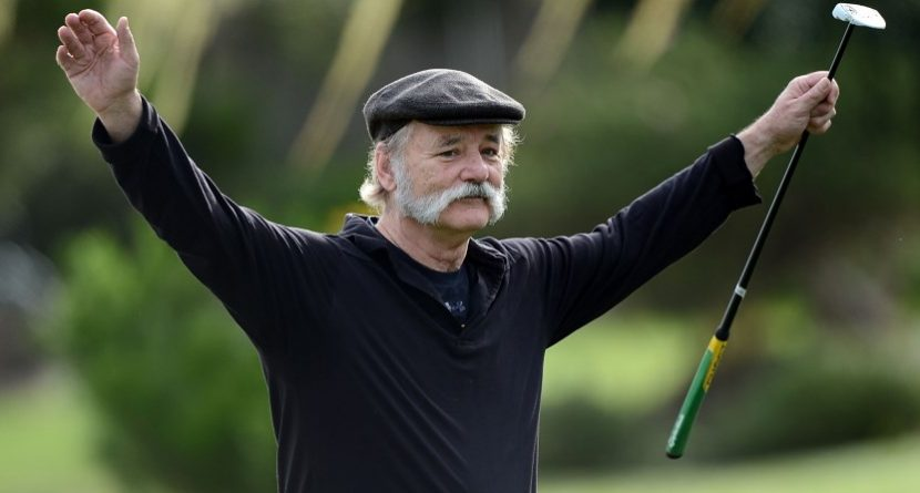 Bill Murray Milks the Laughs in Cow Shorts