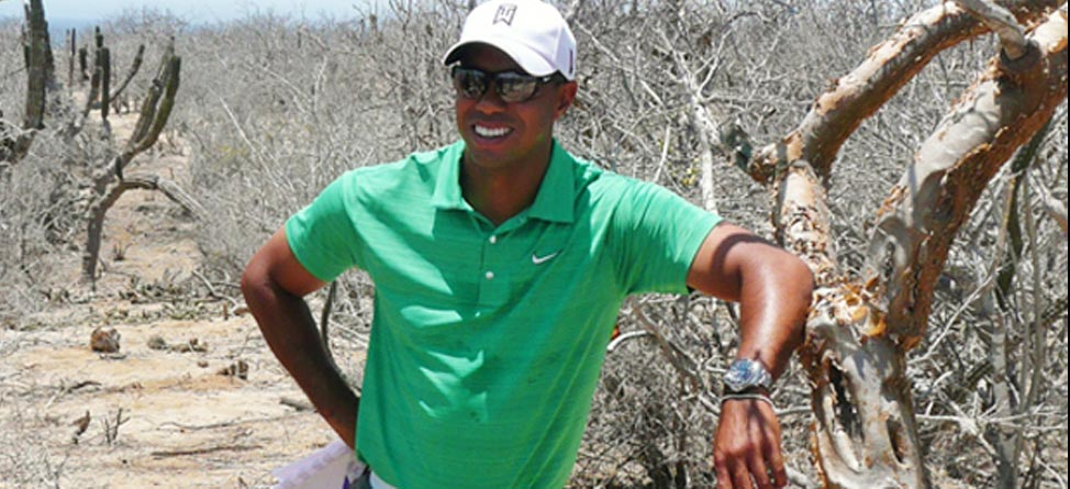 Tiger Woods Design Making Progress in Cabo San Lucas