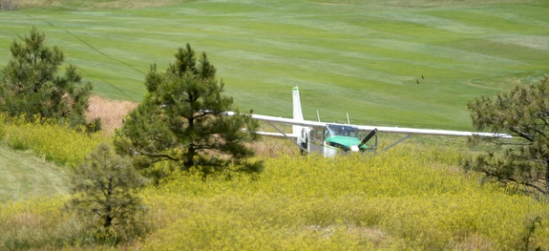 Landing Planes on Golf Courses is Becoming a Thing
