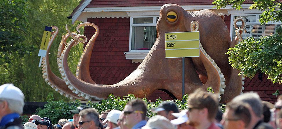 An Octopus' Garden In The Shade