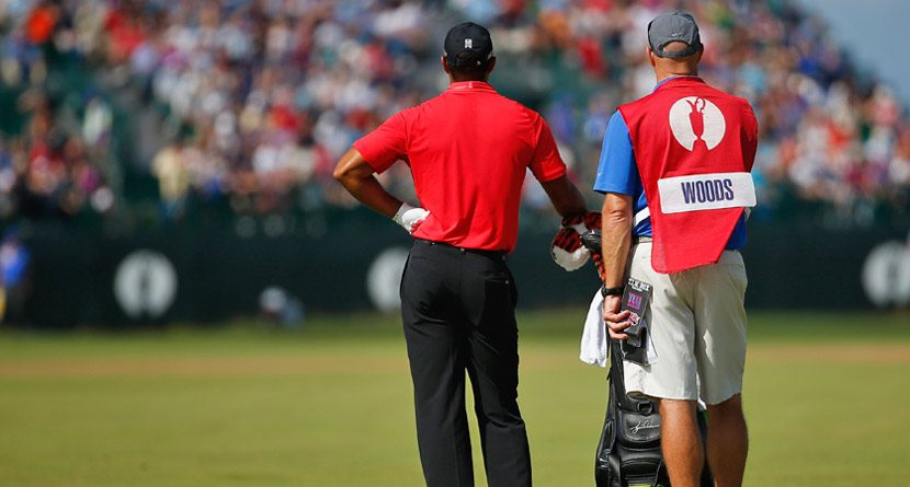 A Wounded Tiger at The Open