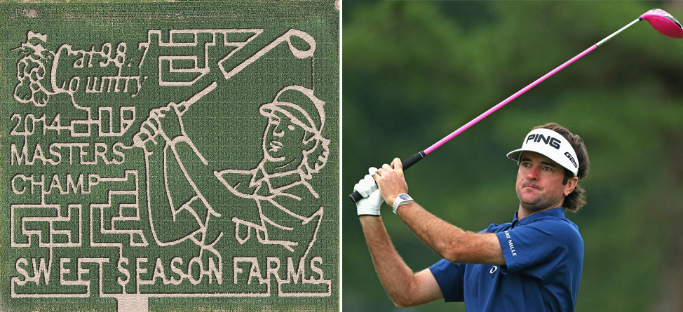 How Corny! Maze To Be Designed After Bubba Watson