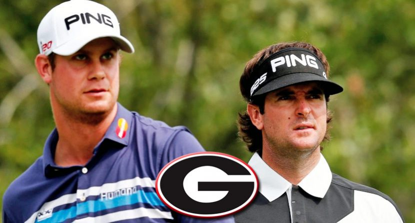 Dominant PGA Tour Season Continues For Georgia Alumni