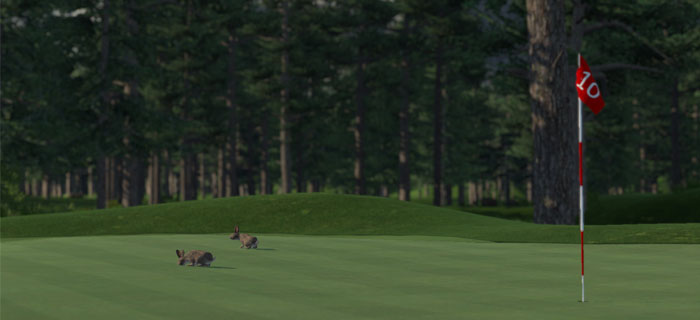 the-golf-club-green_article