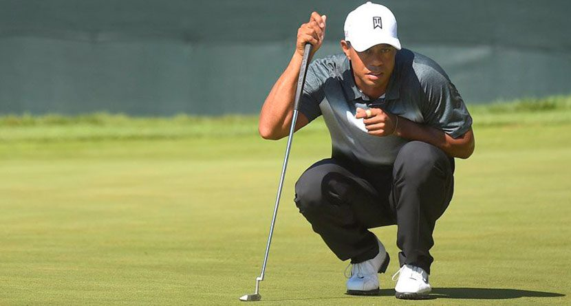 Tiger 'The Tactician' Of DL3's Ryder Cup Vice Captains