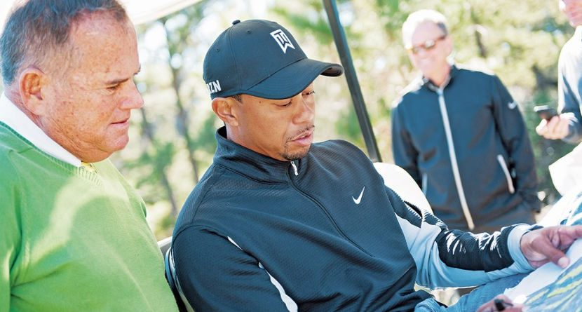Tiger May Take His Design Talents To Chicago