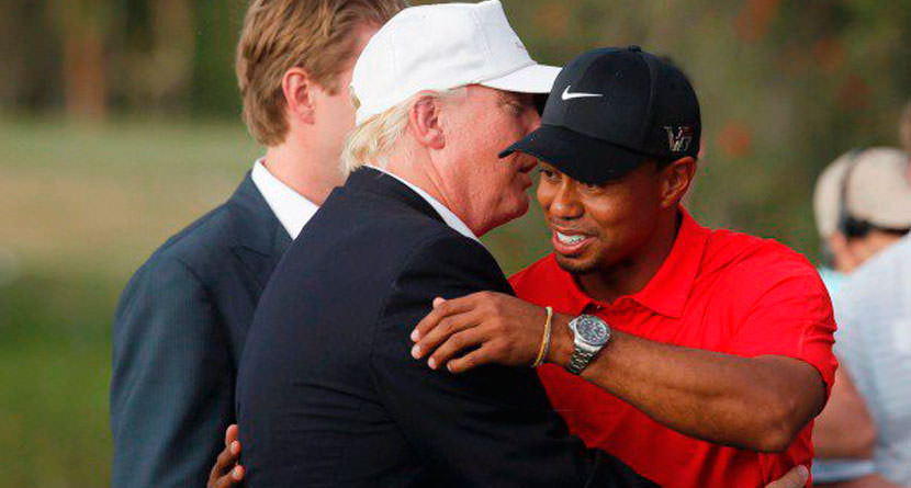 Tiger Breaks Down Trump's Golf Game In Blog Post