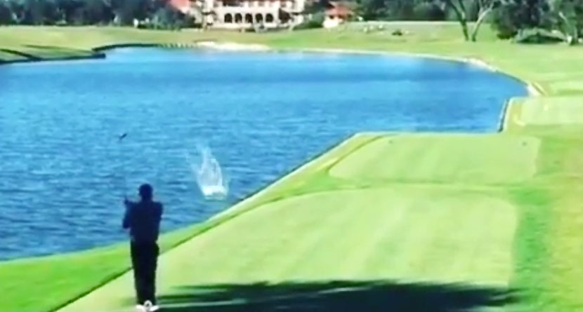 TPC Sawgrass Golfer Nails Bird with Drive on 18