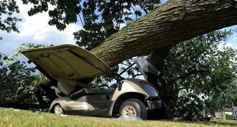 Tree Crushes Golf Cart With Man Inside