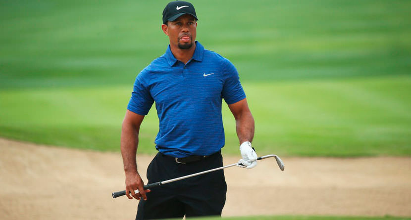 Tiger Woods Finds New Mentor in Michael Phelps