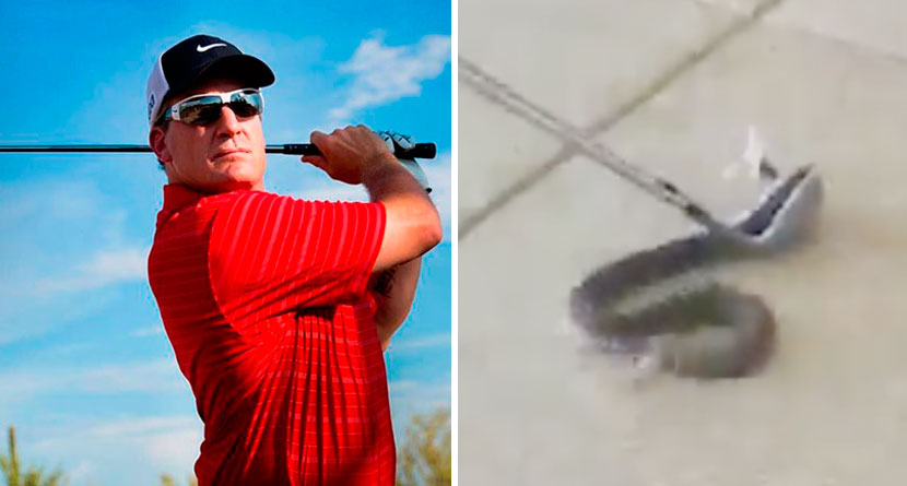 Roenick Catches Rattlesnake With Two Golf Clubs