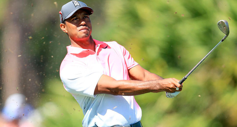 Tiger's Odds to Win Masters Skyrocket After Honda