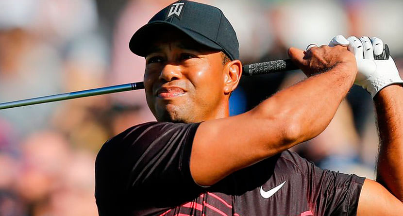 Tiger Eyes Ryder Cup Role as Playing Vice Captain