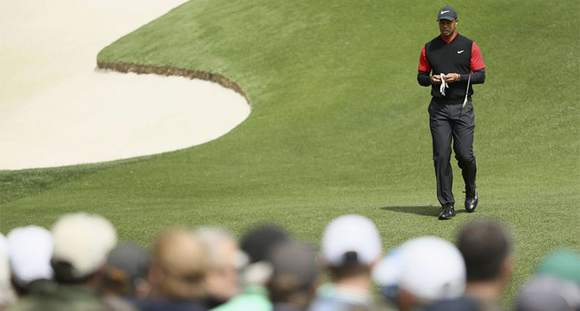What's Next For Tiger Woods?