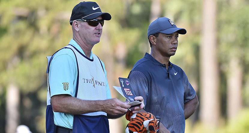 Tiger Caddie Experience Auctions For $50,000