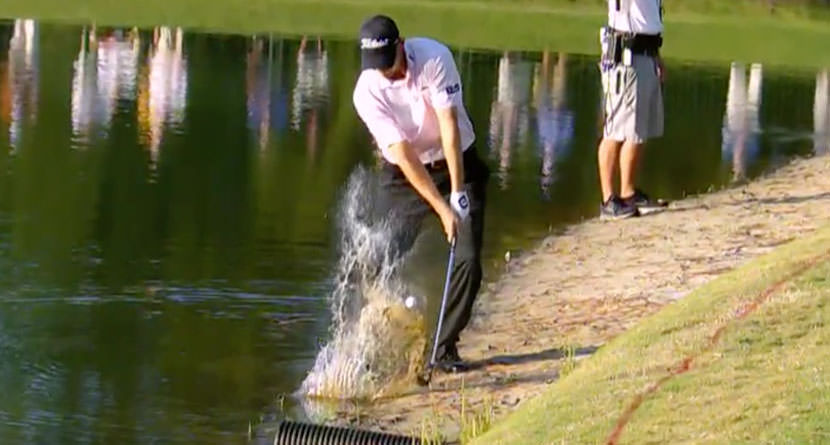 Bill Haas' FedEx Cup-Winning Water Shot