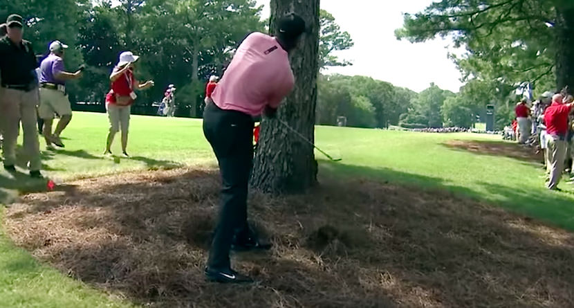 Tiger Hits Ridiculous Recovery From Pine Straw