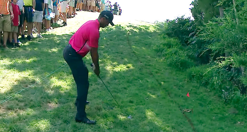 Tiger's Ridiculous 5-Wood Chop-Cut Recovery