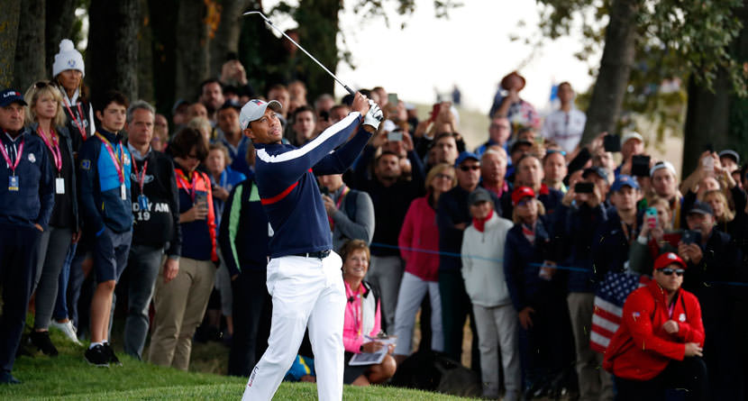 Tiger Stuffs Difficult Lob Shot From Thick Rough