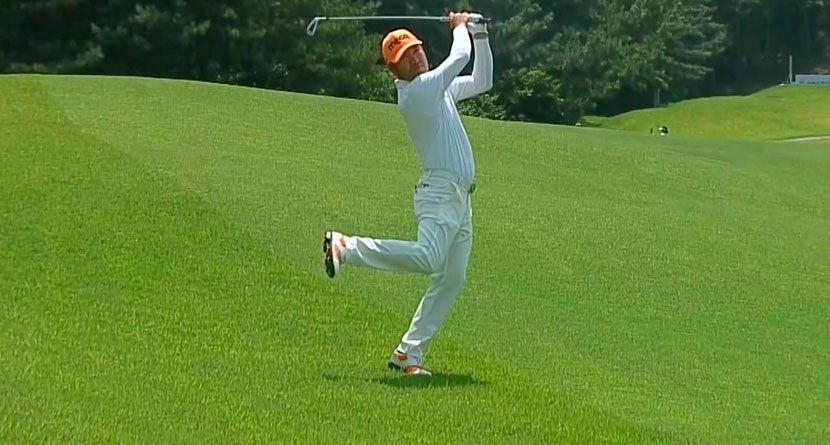 Petition Circulating To Get Fan Favorite Into Tour Event