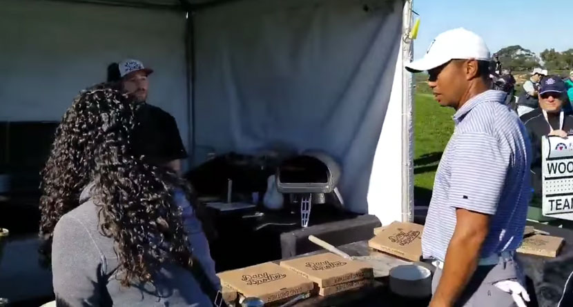 Tiger Denied Slice By Local Pizza Boy