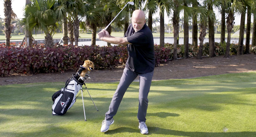 Utilize An Untapped Resource For Your Swing