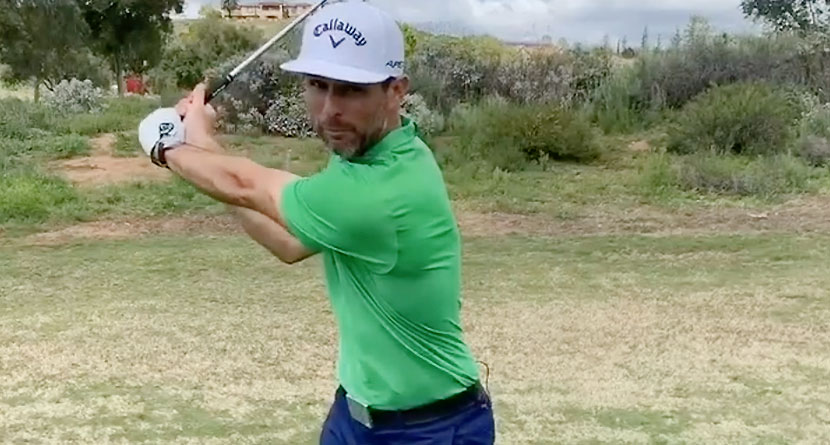 Top-100 Teacher's Preferences For A Great Swing