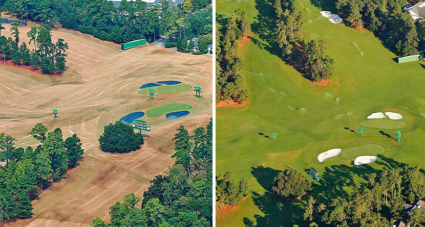 How Augusta National Got So Green So Quickly